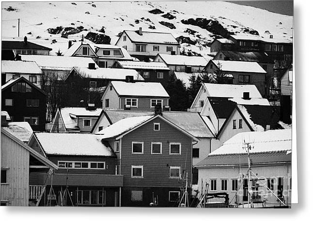 Honningsvag Town Traditional Wooden Houses Finnmark Norway Europe Greeting Card by Joe Fox