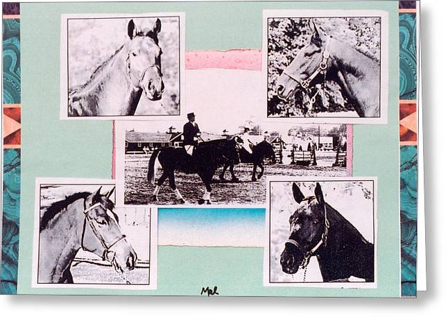 Horse And Rider C Greeting Card