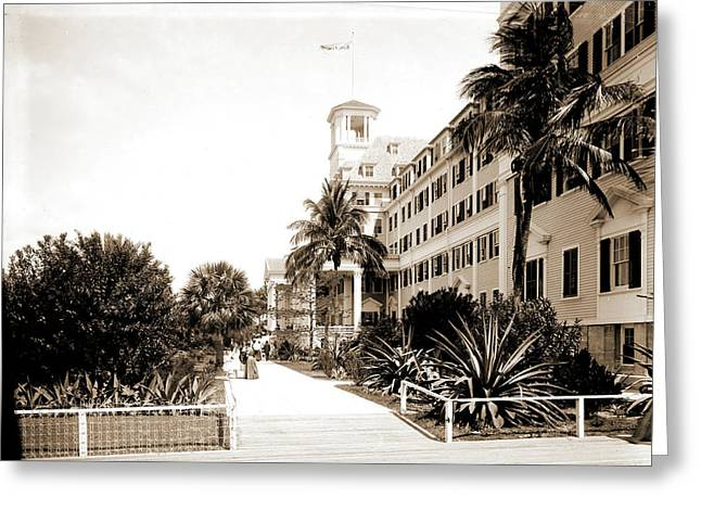 Hotel Royal Poinciana, Palm Beach, Fla, Resorts Greeting Card