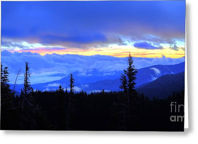 Hurricane Ridge Greeting Card by Twenty Two North Photography