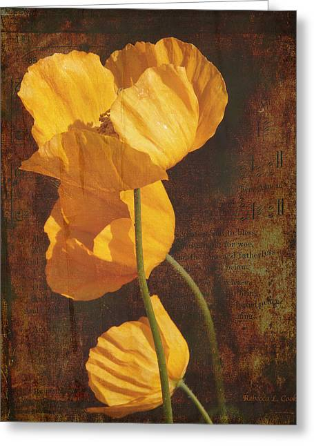 Icelandic Poppy Greeting Card