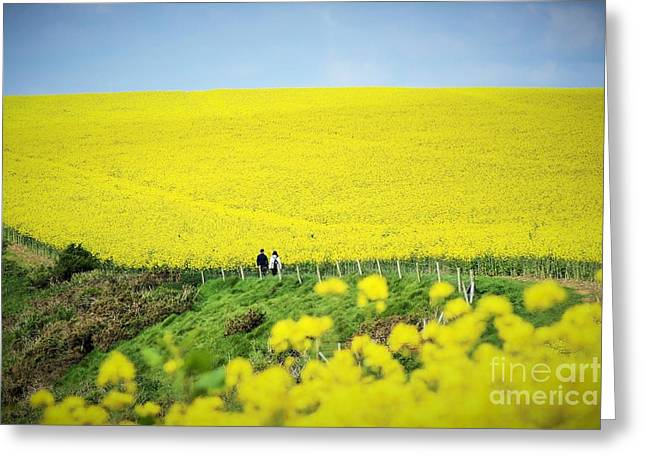 Rapeseed Field... Love Story Greeting Card