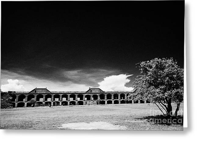 Interior Courtyard Parade Ground Of Fort Jefferson Dry Tortugas National Park Florida Keys Usa Greeting Card by Joe Fox