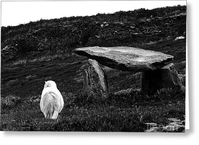 Irish Standing Stones Greeting Card by Patricia Griffin Brett