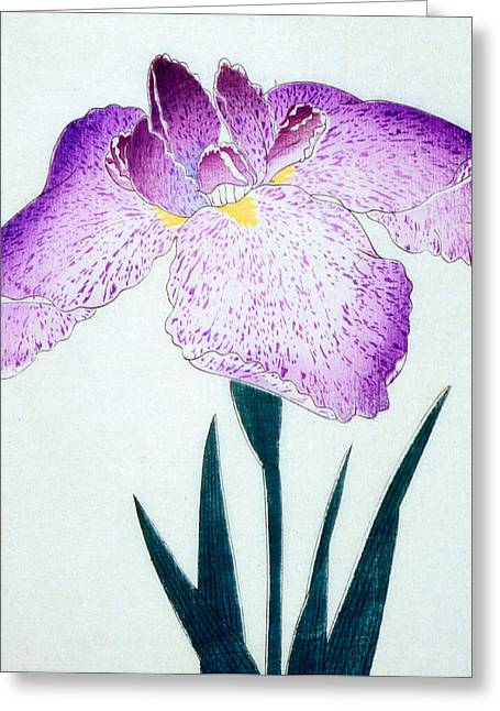 Japanese Flower Greeting Card by Japanese School
