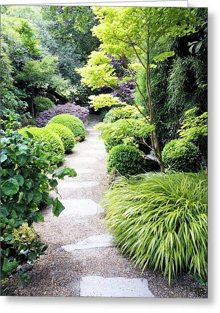 Japanese Garden Greeting Card by Anthony Cooper/science Photo Library