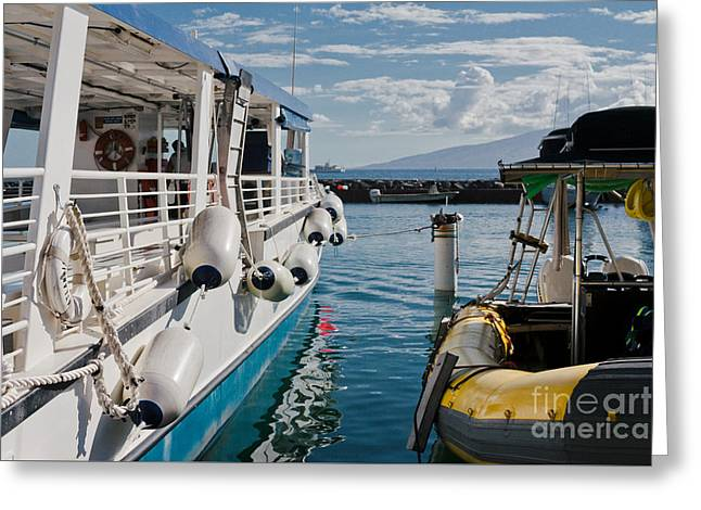 Lahaina Harbour Maui Hawaii Greeting Card by Sharon Mau