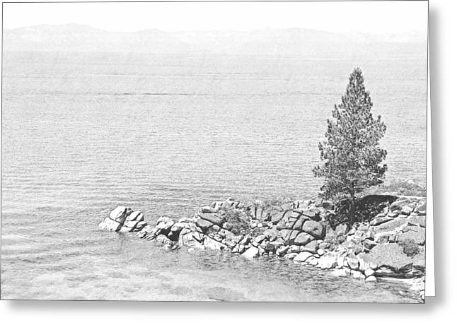 Lake Tahoe Rocky Point Greeting Card by Frank Wilson
