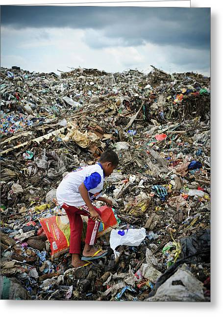 Landfill Scavenging Greeting Card by Matthew Oldfield