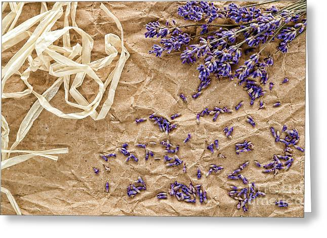Lavender Flowers And Seeds Greeting Card by Olivier Le Queinec