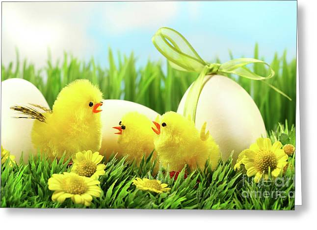 Little Yellow Easter Chicks In The Tall Grass  Greeting Card by Sandra Cunningham