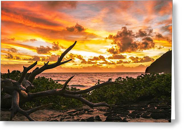 Makapuu Sunrise 4 Greeting Card