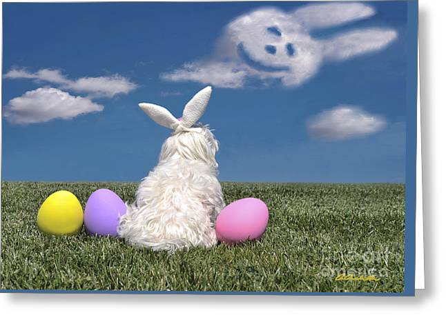 Maltese Easter Bunny Greeting Card