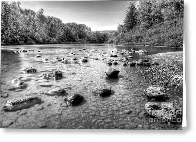Manistee River In Black And White Greeting Card by Twenty Two North Photography
