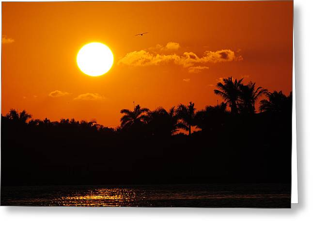 Marco Island Sunset Greeting Card