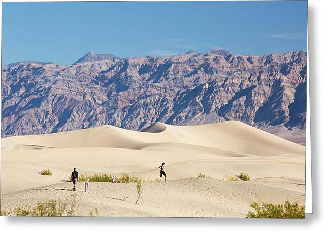 Mesquite Flat Sand Dunes Greeting Card by Ashley Cooper