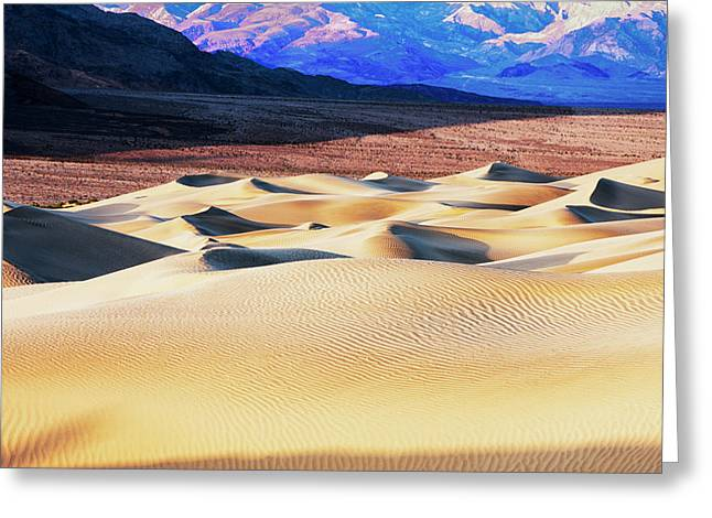 Mesquite Sand Dunes Greeting Card