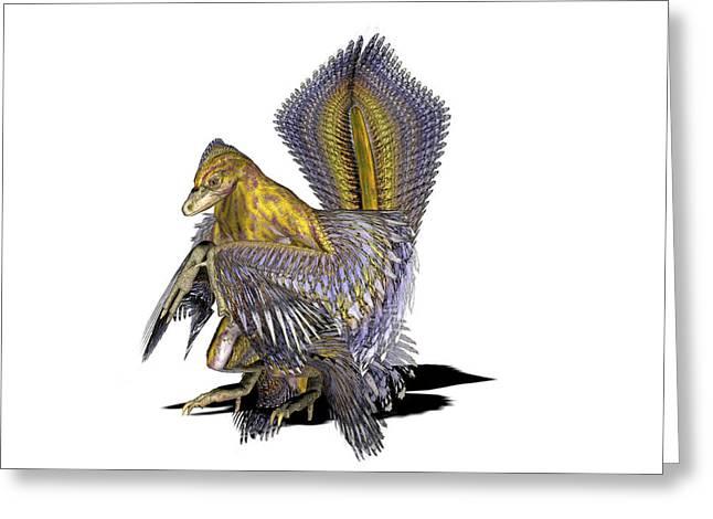 Microraptor Dinosaur Greeting Card by Friedrich Saurer