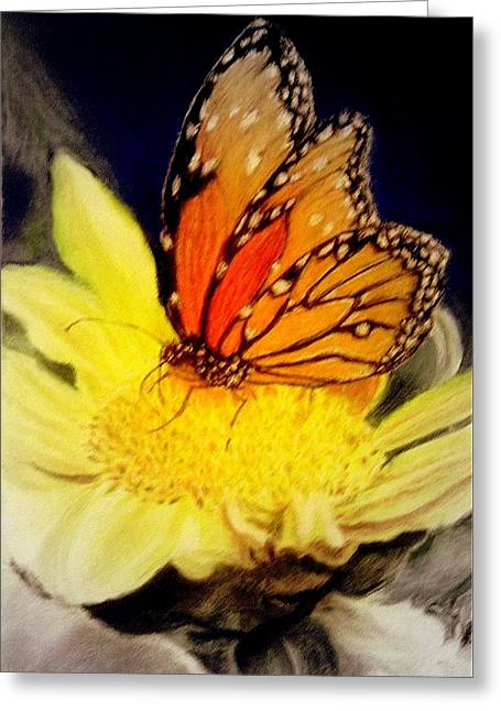 Monarch Resting Sold Pastel Greeting Card by Antonia Citrino