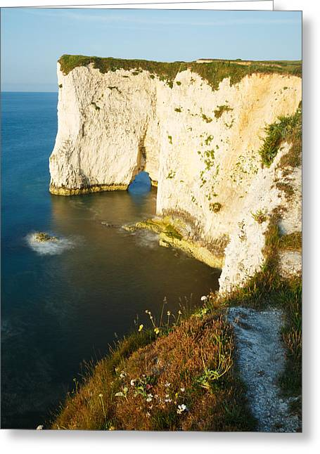Morning Light At Old Harry Rocks Greeting Card