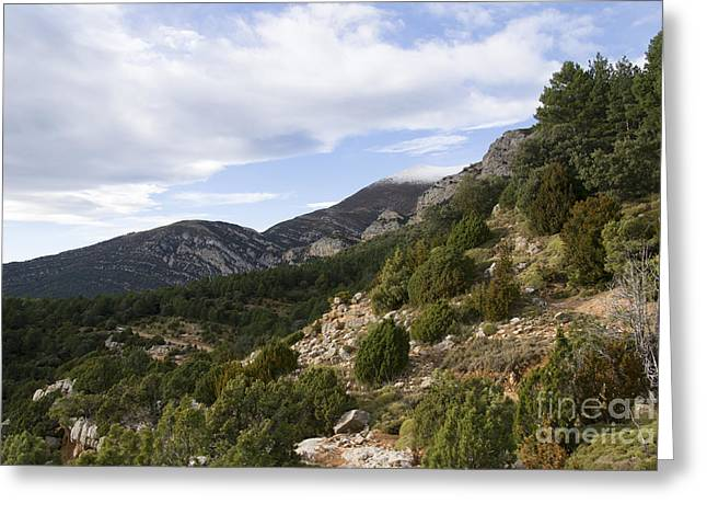 Mountain Landscape In Huesca Greeting Card