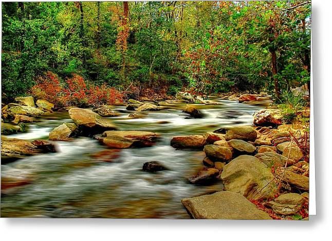 Mountain Stream Greeting Card by Ed Roberts