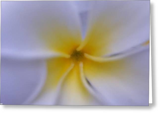 My Plumeria Greeting Card by Gornganogphatchara Kalapun