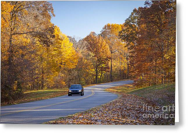 Natchez Trace Greeting Card by Brian Jannsen