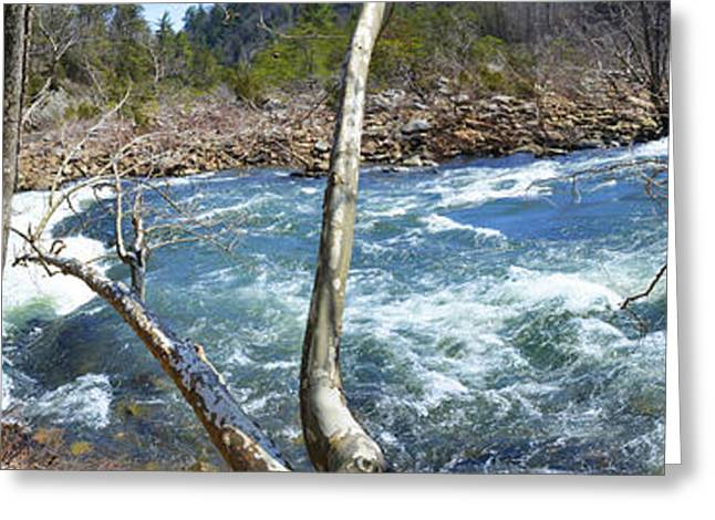 Greeting Card featuring the photograph Nemo Rapids by Paul Mashburn