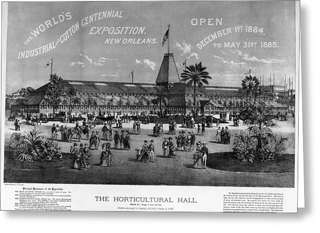 New Orleans Fair, 1884 Greeting Card by Granger