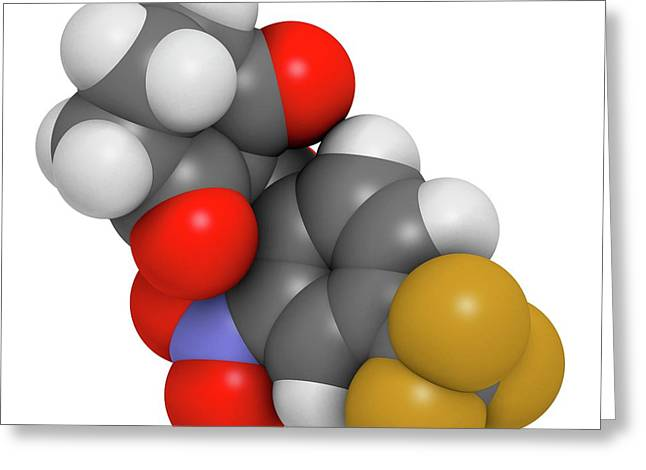 Nitisinone Drug Molecule Greeting Card