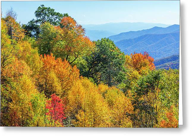 North Carolina, Great Smoky Mountains Greeting Card