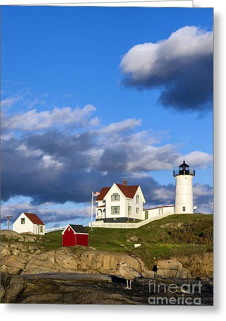 Nubble Lighthouse Greeting Card by John Greim