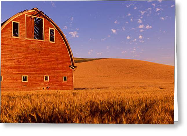 Old Barn In A Wheat Field, Palouse Greeting Card by Panoramic Images