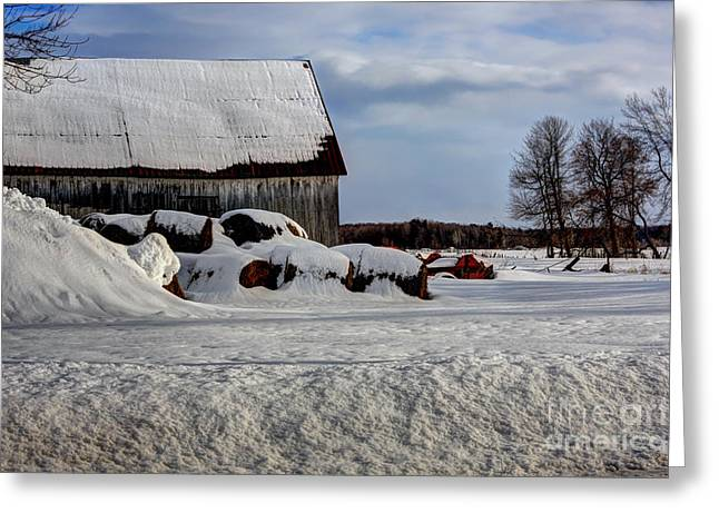 Old Barn In Winter Greeting Card by Sophie Vigneault