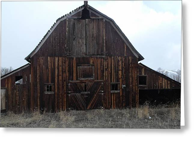 Old Barn Greeting Card by Yvette Pichette