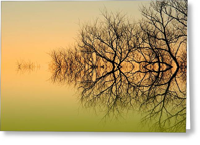 Olive Branches Greeting Card by Sharon Lisa Clarke