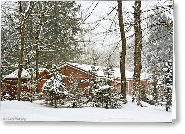 Greeting Card featuring the photograph One Snowy Day  by Ann Murphy