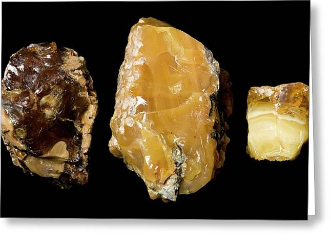 Opaque Amber Greeting Card by Pascal Goetgheluck/science Photo Library