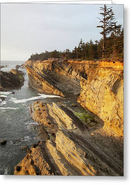 Or, Shore Acres State Park, Sandstone Greeting Card by Jamie and Judy Wild