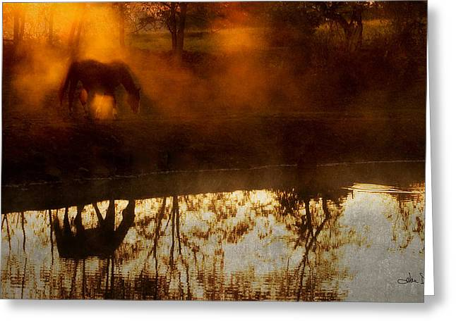 Greeting Card featuring the photograph Orange Mist by Joan Davis