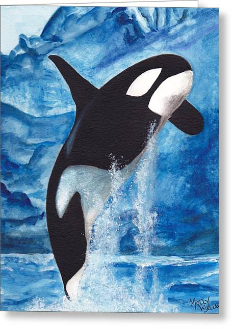 Orca Greeting Card by Molly Williams