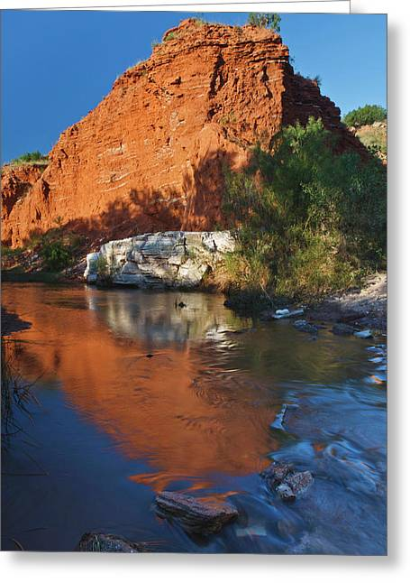 Palo Duro Canyon State Park, Texas Greeting Card by Larry Ditto