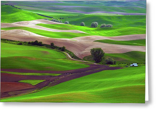 Palouse View From Steptoe Butte Greeting Card by Michel Hersen