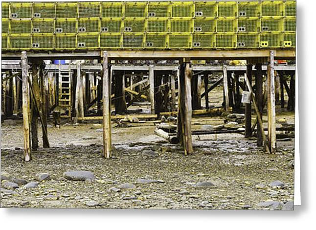 Panorama Of Pier In New Harbor Maine At Low Tide Greeting Card by Keith Webber Jr