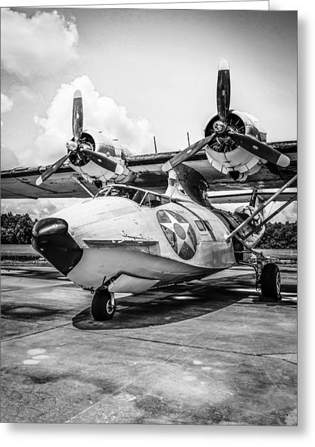 Pby5a Greeting Card