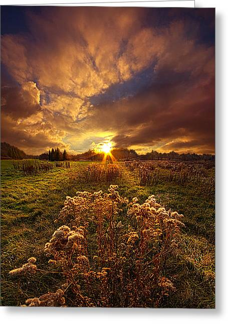 Peace Of Mind Greeting Card by Phil Koch
