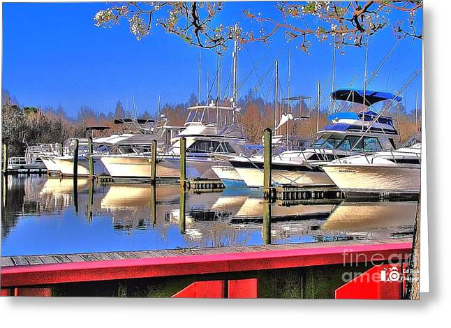 Peaceful Marina Greeting Card by Ed Roberts