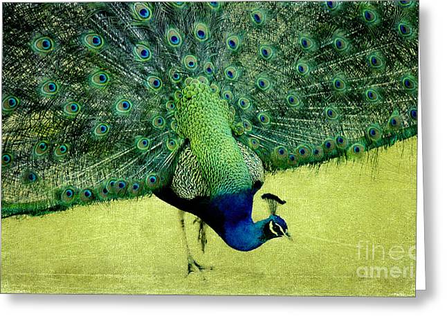 Peacock Plume Greeting Card by Linde Townsend