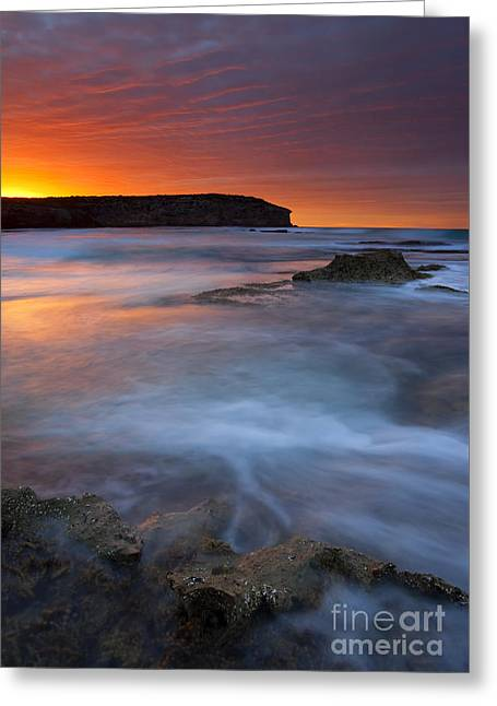 Pennington Dawn Greeting Card by Mike  Dawson